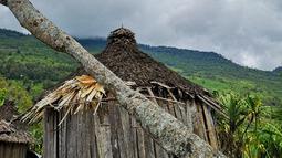 Rumah tradisional Papua atau honai di Distrik Puldama, Kabupaten Yahukimo, Provinsi Papua. Sebelumnya, dari generasi ke generasi tempat ini tak pernah tersentuh penerangan lampu listrik. (Liputan6.com/HO/Hadi M Juraid)