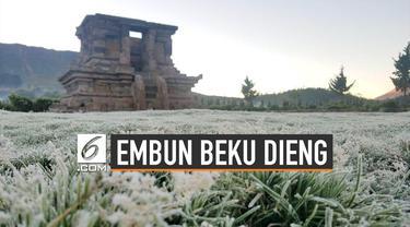 Perbedaan Embun Beku Dieng dan Salju Eropa