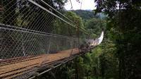 Jembatan gantung dibangun di area Taman Nasional Gunung Gede Pangrango (TNGGP) Resort Situgunung, tepatnya di Kecamatan Kadudampit, Kabupaten Sukabumi, Jawa Barat. (Liputan6.com/Mulvi Mohammad)