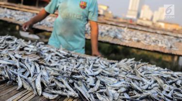 Pekerja menyelesaikan pengolahan ikan asin di kawasan Muara Angke, Jakarta, Kamis (4/7/2019). Jika pada musim hujan perajin ikan asin memproduksi 700 kilogram dalam tiga hari, saat kemarau ini mereka mampu memproduksi satu ton per hari. (Liputan6.com/Faizal Fanani)