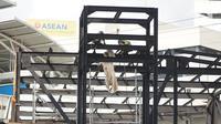 Pekerja menyelesaikan pembangunan proyek jembatan layang atau skybridge Stasiun MRT Asean-Halte Transjakarta CSW di kawasan Kebayoran Baru, Jakarta, Selasa (21/1/2020). (Liputan6.com/Immanuel Antonius)