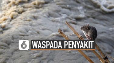 Sejumlah wilayah di Indonesia terendam banjir. Beberapa penyakit perlu diwaspadai.