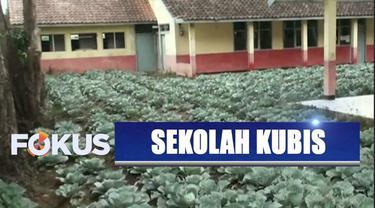 Tiga tahun terbengkalai, gedung sekolah dasar di Bandung, Jawa Barat, dimanfaatkan warga jadi kebun kubis.