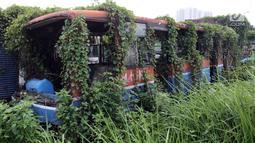 Tanaman menutupi bangkai bus Metromini di Pool Bus Dishub DKI Jakarta, Jumat (23/3). Bus Metromini yang rusak dan tak layak mulai digantikan oleh angkutan umum Minitrans dan Metrotrans. (Liputan6.com/Arya Manggala)