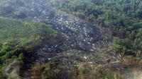 Kondisi hutan di Kalimantan Timur yang hangus akibat kebakaran yang terjadi sejak beberapa bulan lalu, Selasa (27/10). Kepala Bidang Informasi BMKG Tirto Djatmiko mengatakan, titik api di Kalimantan relatif berkurang. (Liputan6.com/Immanuel Antonius)