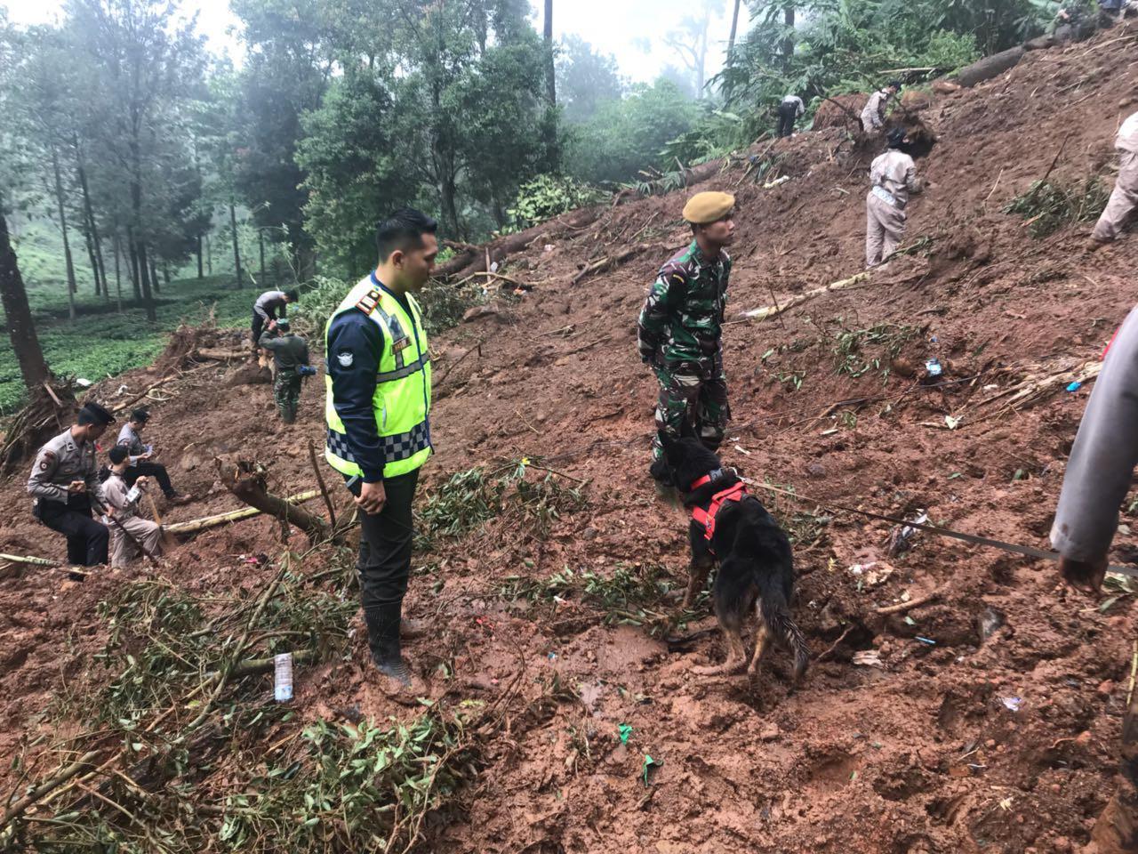 Petugas SAR gabungan masih berupaya mencari korban yang tertimbun longsor di Puncak, Kabupatem Bogor (Liputan6.com/dok. Polres Bogor)