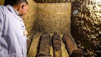 Situs makam kuno berisi 50 mumi ditemukan di Mesir (AFP/Mohamed El-Shahed)