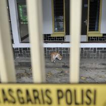 Seekor kucing terlihat di halaman rumah yang dijadikan klinik aborsi ilegal di Jalan Paseban Raya, Jakarta, Minggu (16/2/2020). Polda Metro Jaya membongkar praktik klinik aborsi ilegal yang sudah beroperasi sejak 2018 silam pada Jumat, 14 Februari 2020. (merdeka.com/Iqbal S Nugroho)