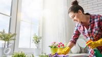 Jika rumah Anda memiliki bau tak sedap, segera atasi agar kenyamanan bisa kembali dirasakan oleh penghuni rumah.