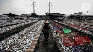 Pekerja menjemur ikan asin di kawasan Kampung Nelayan Muara Angke, Jakarta, Kamis (3/6/2021). Realisasi anggaran pemulihan ekonomi nasional (PEN) hingga 21 Mei 2021 mencapai Rp 183,98 triliun atau 26,3 persen dari total pagu anggaran sebesar Rp 699,43 triliun. (Liputan6.com/Johan Tallo)