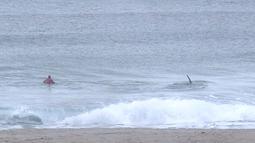 Pada potongan video memperlihatkan paus pembunuh (orca) melewati peselancar Afsel, Shanon Ainsle di tengah kejuaraan selancar di Unstad, Norwegia, Sabtu (23/9). Para peselancar pun dengan cepat berlarian ke pantai. (HO/LOFOTEN MASTERS 2017/AFP)