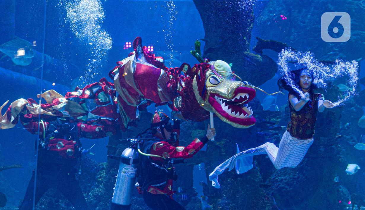 Aksi Liong dan putri duyung menghibur pengunjung di Jakarta Aquarium & Safari (JAQS), Jakarta Barat, Jumat (12/2/2021). Pertunjukan Liong Show bawah air yang diikuti oleh para putri duyung tersebut untuk memeriahkan Hari Raya Imlek 2572 atau Tahun Baru China. (Liputan6.com/Faizal Fanani)