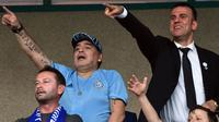 Legenda Argentina, Diego Maradona menonton pertandingan sepak bola antara FC Dinamo Brest dan FC Shakhtyor di Brest, Senin (16/7). Maradona menandatangani kontrak menjadi ketua Dinamo Brest dengan durasi tiga tahun. (AFP PHOTO / Sergei GAPON)