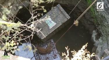 Seekor macan tutul jatuh ke sumur dengan kedalaman mencapai 15 meter di India. Tim penyelamat berhasil menyelamatkan hewan tersebut.