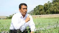 Anggota Komisi IV DPR Mindo Sianipar menilai Menteri Pertanian (Mentan) Amran Sulaiman telah menunjukkan kerja maksimal dalam menjaga stok ketersediaan pangan. Produksi di sektor pertanian masih dianggap optimal.