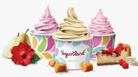 Yogurt. foto: istimewa