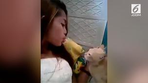 Beri Makan Kucing Pakai Mulut, Bibir Perempuan Ini Digigit