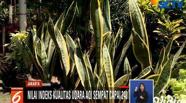 Sejumlah cara pun ditempuh Pemprov DKI Jakarta untuk bisa mengatasi buruknya kualitas udara di Jakarta.