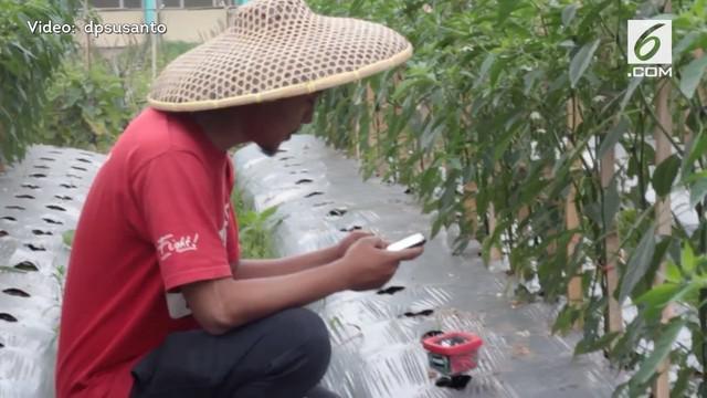 Melalui alat ini, petani dapat mengetahui informasi terkini kebun.