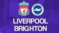 Premier League - Liverpool Vs Brighton (Bola.com/Adreanus Titus)