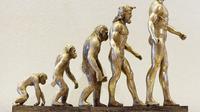 Ilustrasi Evolusi Manusia via Pixabay / Alexas_Fotos