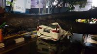 Pohon mahoni tumbang dan menimpa mobil yang parkir di kawasan Menteng, Jakarta Pusat, Senin 21 September 2020. (Twitter @TMCPoldaMetro)