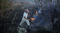 Anggota militer Brasil sedang mengecek bekas kebakaran hutan Amazon (AFP/Carl de Souza)