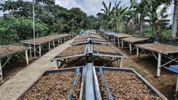 Pekerja menjemur kerupuk kulit di industri rumahan kawasan Bogor, Jawa Barat, Minggu (26/9/2021). Pelaku usaha kerupuk kulit mengaku permintaan kerupuk kulit mengalami penurunan hingga 50 persen akibat Pemberlakuan Pembatasan Kegiatan Masyarakat (PPKM). (merdeka.com/Iqbal S Nugroho)
