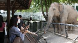Pengunjung memotret seekor gajah di Khao Kheow Open Zoo, Provinsi Chonburi, Thailand, Selasa (16/6/2020. Enam kebun binatang di Thailand akan kembali dibuka bagi pengunjung secara gratis mulai 15 hingga 30 Juni. (Xinhua/Zhang Keren)
