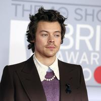 Harry Styles (Photo by Vianney Le Caer/Invision/AP)