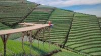 Gardu pandang yang menjadi salah satu spot foto incaran para pengunjung (dok. Instagram @nampan_sukomakmur/ https://www.instagram.com/p/CPSFkZCM2Zz/?utm_medium=copy_link/ Dinda Rizky)