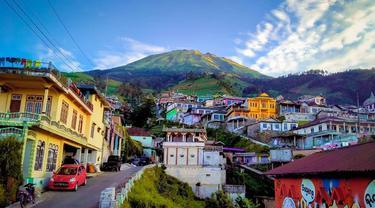 Nepal Van Java