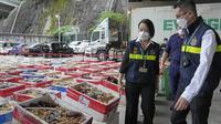 Hong Kong menyita lobster selundupan Australia pada Jumat (15/10/2021). (AP Photo/Kin Cheung)