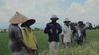 Pupuk Indonesia Ajak Milenial Jadi Petani