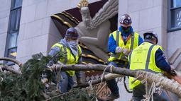 Pekerja mengamankan cabang pohon Natal Rockefeller Center 2020 saat akan diletakkan di Rockefeller Plaza, New York pada Sabtu (14/11/2020). Pohon cemara spruce Norwegia setinggi 75 kaki dan 11 ton tersebut berasal dari Oneonta untuk menyambut Natal 2020. (AP Photo/Craig Ruttle)