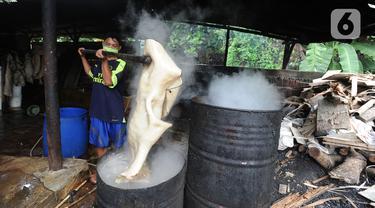 Pekerja merebus bahan baku kerupuk kulit di Pabrik Krupuk Kulit Bambang, Depok, Rabu (17/2/2021). Pemilik usaha menurunkan jumlah produksi kerupuk kulit mentah siap goreng dari 1 ton menjadi 500 kg per hari akibat pandemi COVID-19 dengan harga jual Rp90 ribu per kilogram. (merdeka.com/Arie Basuki)