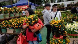Warga Hong Kong berburu jeruk Mandarin untuk menyambut Tahun Baru Imlek di Victoria Park, Senin (4/2). (AP Photo/Vincent Yu)