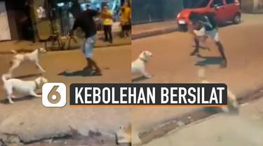 Pria itu langsung mengeluarkan jurus silatnya di depan anjing-anjing tersebut.