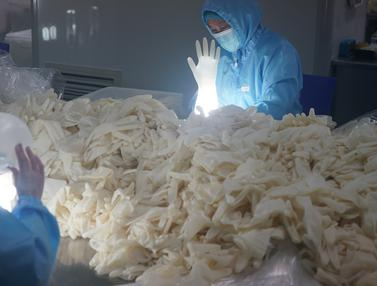 Pabrik Sarung Tangan Medis di China