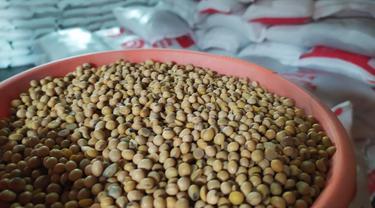 Butiran kacang kedelai impor Amerika menjadi salah satu komoditas yang sangat dibutuhkan pengrajin tempe di Garut, Jawa Barat.