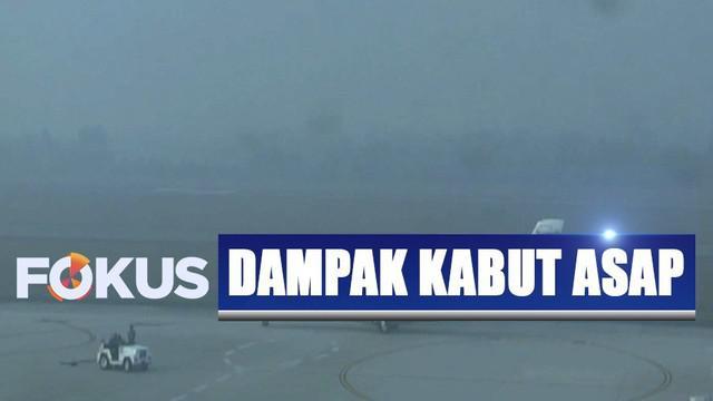 Jarak pandang di Bandara Sultan Thaha Jambi hanya berkisar 500 meter sehingga tak satupun pesawat bisa mendarat atau diberangkatkan.