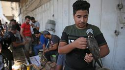 Seorang pria Irak memegang elang di pasar hewan peliharaan al-Ghazal di ibukota Irak, Baghdad (11/10/2019). Pasar hewan peliharaan yang berada di kota Baghdad ini telah ada sejak tahun 1950-an. (AFP Photo/Ahmad Al-Rubaye)