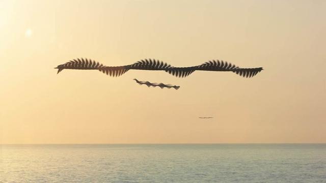 Unduh 64+  Gambar Burung Merpati Sedang Terbang HD
