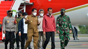 Presiden Jokowi Datang ke Batam, Tanam Mangrove dan Lepas Elang Bondol