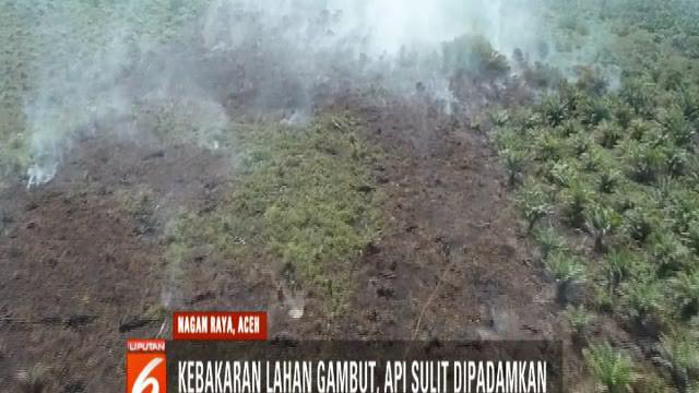 Stok air yang sedikit tak bisa menjinakkan api sehingga petugas pun menggunakan benda apa saja yang diperoleh di lokasi.