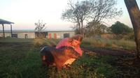 Bayi Kuda Nil bernama Charlie bersama pengasuhnya, Karen Trendler (sumber. Lostateminor.com)