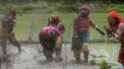 Petani bermain lumpur saat memeriahkan Hari Padi Nasional di desa Tokha di pinggiran Kathmandu, Nepal, Selasa (29/6/2021). Peringatan Hari Padi Nasional yang juga disebut Asar Pandra ini ditandai dengan dimulainya penanaman padi di sawah saat musim hujan. (AFP/Prakash Mathema)
