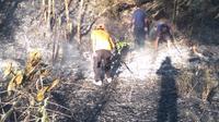 Petugas tengah mengamati sisa kebakaran di sekitar lokasi Gunung Raung. Jawa Timur. (Liputan6.com/Muhammad Radityo Priyasmoro)