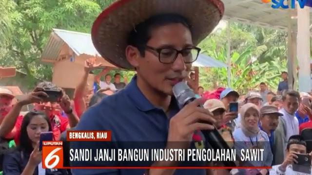 Tak hanya berorasi, Sandi yang merupakan wakil dari Capres Prabowo Subianto ini juga menyempatkan diri untuk memasukan tandan sawit ke dalam gerobak dan mendorongnnya.