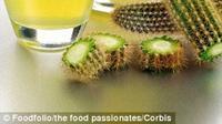 Kaktus, tumbuhan 'superfood' padang pasir berantioksidan tinggi yang mulai dilirik oleh para pencinta kuliner dunia (foodfolio/the food pasionates/Corbis)